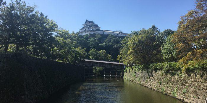 和歌山経済新聞が7周年を迎えました!